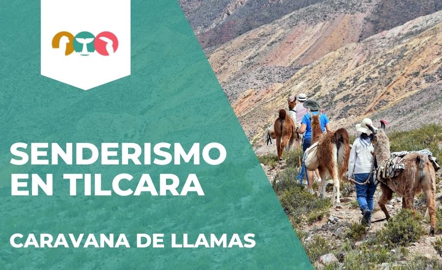 Trekking en Tilacara